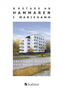 hammaren-broschyr-omslag